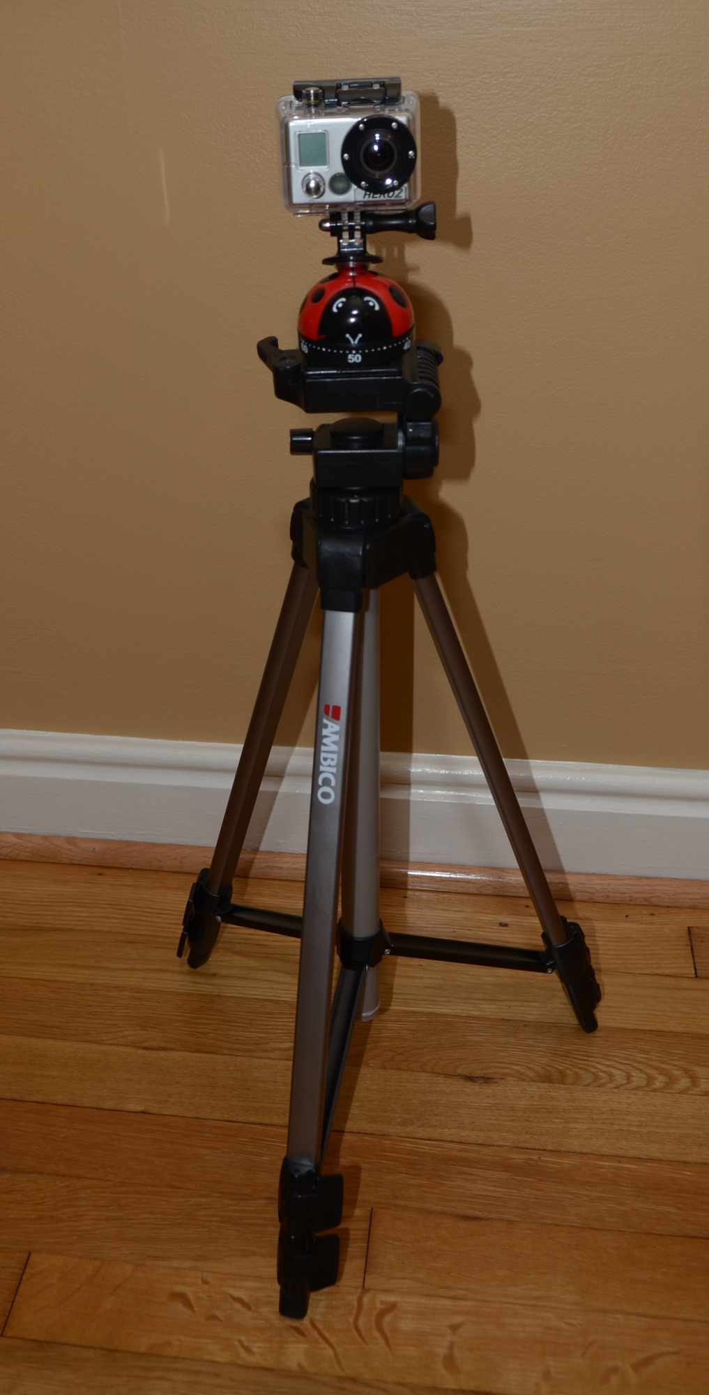 GoPro timer on tripod